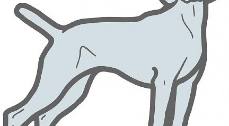 Άδεια διεξαγωγής Εθνικών Αγώνων Κυνηγετικών Ικανοτήτων (Α.Κ.Ι.) σκύλων δεικτών.