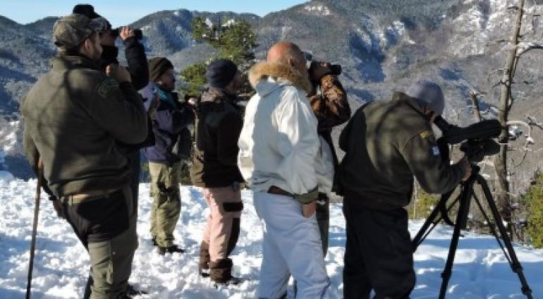 Για 11η συνεχόμενη χρονιά η ΚΟΜΑΘ συνεχίζει τις καταμετρήσεις αγριόγιδου στο Παρθένο Δάσος Φρακτού