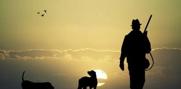 Οι ενστάσεις της ΚΣΕ για το νομοσχέδιο των ζώων συντροφιάς
