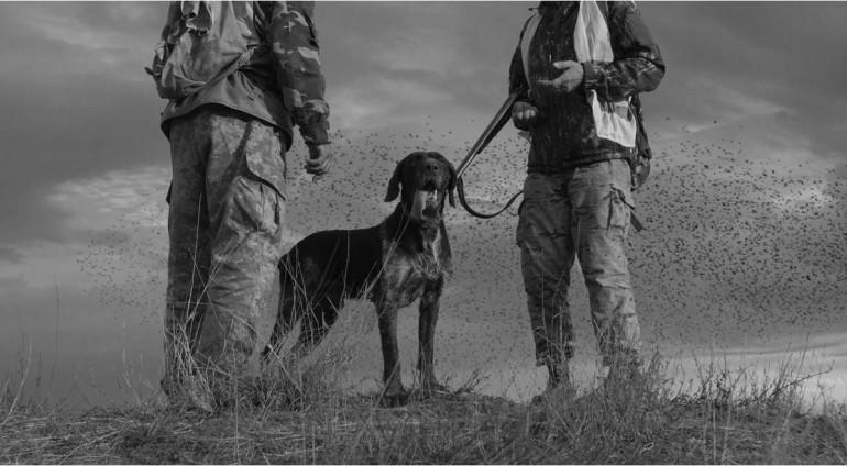 Ενέργειες της ΚΣΕ για εξαίρεση των κυνηγών από τους περιορισμούς μετακίνησης