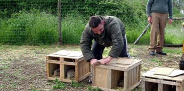 Συμμετοχή της Κυνηγετικής Ομοσπονδίας Μακεδονίας – Θράκης στο 4ο Πανελλήνιο Συνέδριο Τεχνολογιας Ζωϊκης Παραγωγής
