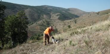 Παλινωδία της Κυβέρνησης και μεροληψία κατά των κυνηγών η νέα αιφνιδιαστική απαγόρευση της θήρας
